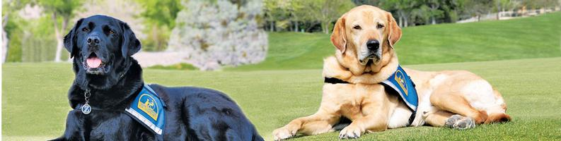 Enchanted Canines Golf Classic